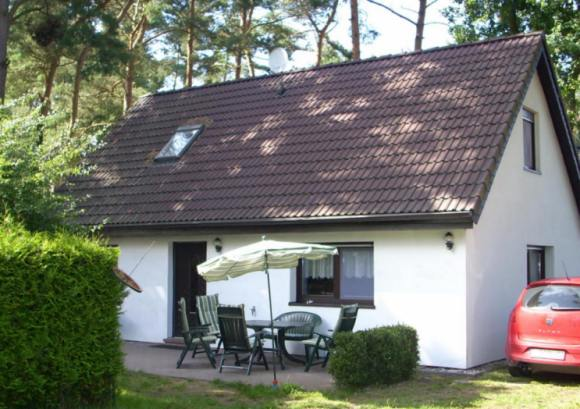 Ferienhaus Ostsee-Urlaub mit Hund auf Waldgr.