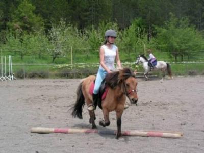 Appartement Familienzimmer auf Pony/Pferdehof